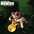 Richard Hawley: Lady's Bridge