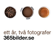 365bilder