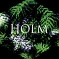 Fredrik: Holm