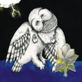 Songs: Ohia: Magnolia Electric Co.