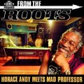 Horace Andy Meets The Mad Professor: From the Roots