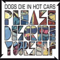 Dogs Die In Hot Cars: Please Describe Yourself