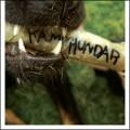 Kamphundar: Kamphundar