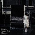 Martina Topley-Bird: Quixotic