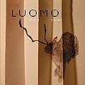 Luomo: Paper Tigers